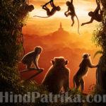 बंदर और गौरैया
