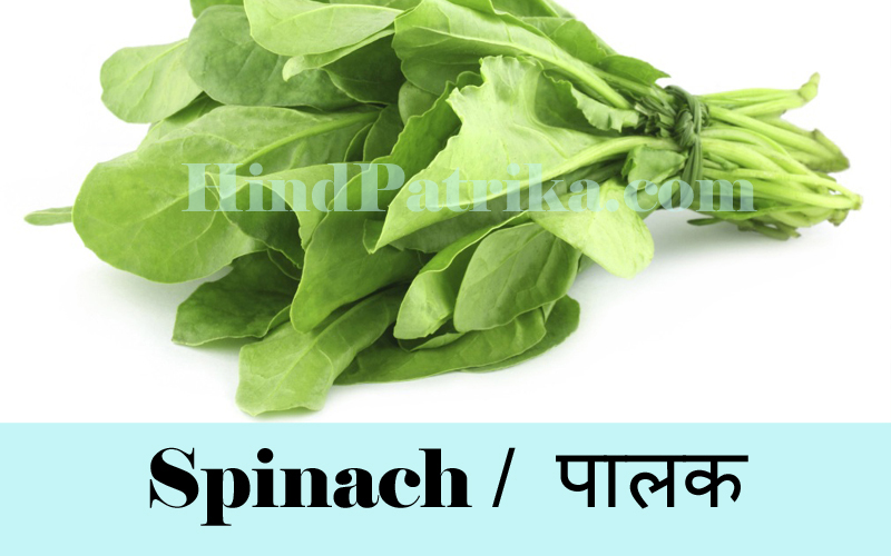Vegetables Name in Hindi