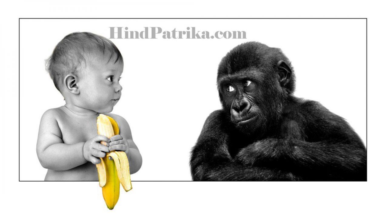हंसी का खजाना | Funny Quote in Hindi | Funny Jokes in