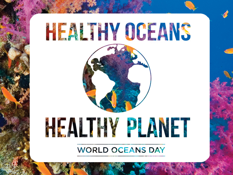 World Ocean Day in Hindi