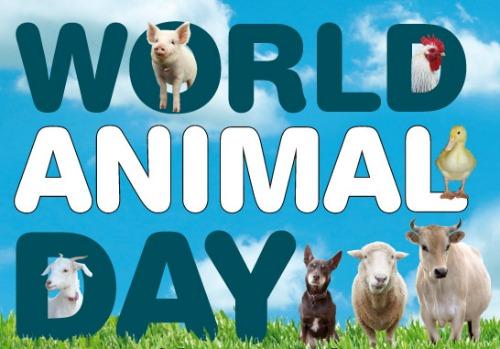 विश्व पशु दिवस मस्सेजिस | World Animal Day Messages in Hindi