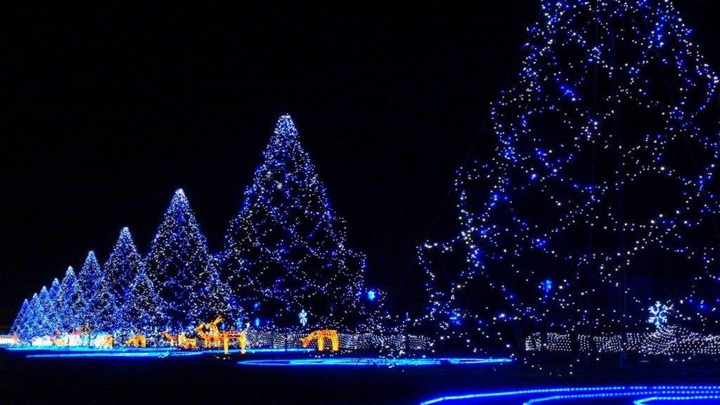 क्रिसमस ट्री को किस तरह रखे की बरगत हो| Christmas Tree Ko Kis Tarah rakhe Ki Barkat Ho