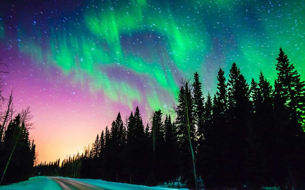 Northern Lights with forest and road