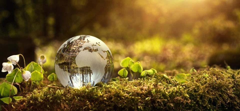 environment day in hindi